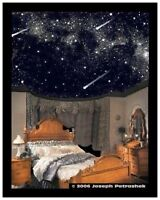 Extremely LOW Price on Starscapes Ceiling Art.