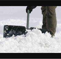 Instant City wide snow removal and maintenance