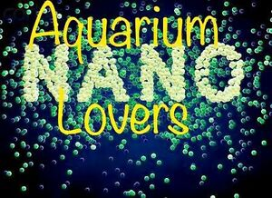 Freshwater Aquarium a SHOPPING Brisbane Paddington Brisbane North West Preview