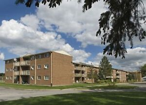 1 Bedroom Apartment for Rent in Niagara Falls!