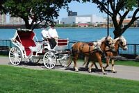 Wedding Carriage services-2017-2018