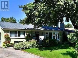 317 Paliser Cres S Richmond Hill Ontario House for sale!