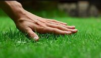 Lawn cutting. Grass cutting.  All View Lawn Care