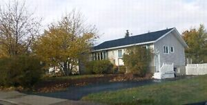 3+1 House in Mount Pearl, Newly Renovated, rented in-law apt