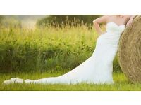 Gorgeous Pronovias dress for sale £ 1,500 ( negotiable)