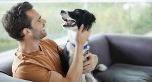 Peace of Mind Pet Care Services - Pet sitting + House sitting Cornwall Ontario image 2