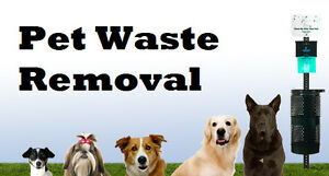 BACKYARD PET WASTE REMOVAL