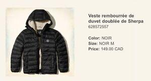 Manteau d'hiver Hollister