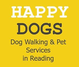 Professional Dog Walker & Pet Services in Reading and Surrounding Areas