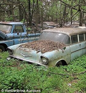Old cars wanted for lawn ornaments