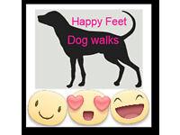 *EXCELENT* Dog Walker