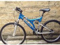 Apollo Enduro 1000 Mountain Bike
