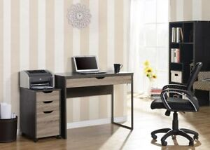 Matching Desk & Printer/Storage Cabinet in GREAT Condition!