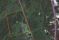 Beautiful 32.27 Acre Lot W/ Mature Trees. Great For Hunting!