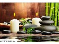 Ebony qualified pampering Swedish massage