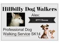 Hillbilly Dog Walkers