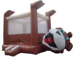 Bouncy House Jumping Castle Rental Kitchener-Waterloo Kitchener / Waterloo Kitchener Area image 2