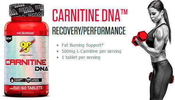 BSN Carnitine DNA 60 Capsules Fat Burner l quadralean lean h