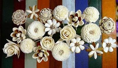 - 20 Balsa Wood Sola Diffuser Flowers with 7.5in. Rattan Reeds, mix of Jasmine