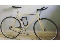 Cream single speed/fix gear bike 54cm