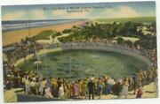 Marineland Postcard