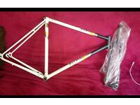 Raleigh bike frame and forks, project, fixie, road, single speed