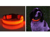 Bright Light up collar with flash settings