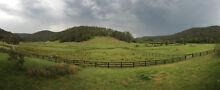 Misty Vale Farm - Horse Agistment Jilliby Wyong Area Preview