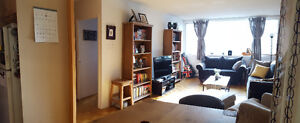 Newly Renovated 2 Bedroom in Downtown Edmonton