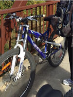 BIKE STOLEN MCDONNEL and GEORGE ST
