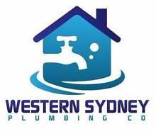 Hot Water System HWS specialist - Plumber - Silverdale Silverdale Wollondilly Area Preview