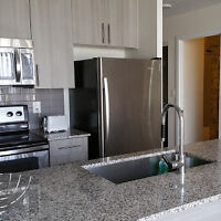 1 BED ROOM FURNISHED CONDO by SQUARE ONE MISSISSAUGA