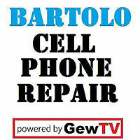 Computer & Cell Smart Repair Technician | Bartolo On King St