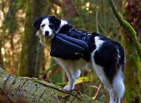 CE Ultimate Trail Pack (Large/noir)