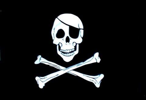 OUTBOUND Skull & Bones Flag 2x3