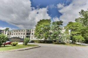 Balmoral Apartments - 1 Bedroom Apartment for Rent