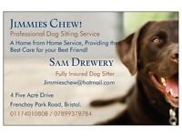 Jimmies Chew! Dog Boarding/Dog Day Care/(Sitting)/Cat Sitting Service/Bristol and Surrounding Areas