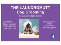 The Laundromutt Dog Grooming all aspects of grooming Dunfermline