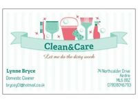 CLEAN AND CARE DOMESTIC CLEANING
