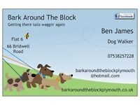 Bark Around The Block Plymouth Dog Walker/Pet Services