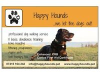 Happy Hounds dog walking service in Fareham. Also boarding, training, puppy visits, vet taxi.