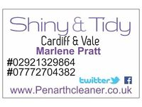 Shiny & Tidy Domestic Cleaning (Offices undertaken)