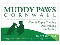 SUCESSFUL DOG WALKING/ PET SITTING BUSINESS FOR SALE