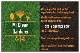 Mi Clean Gardens