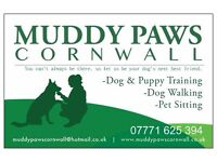 MANAGER/ DOG WALKER REQUIRED