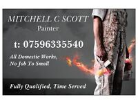 Painter & Decorator Fully Qualified 20 + yrs Experience