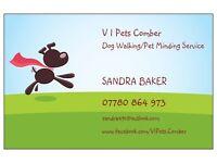 Dog Walking /Home Visiting Service