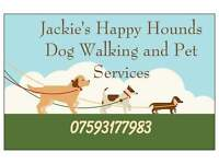 Jackie's Happy Hounds Dog Walking , Doggy Day Care and Home Boarding