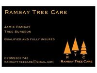 Fully qualified tree surgeon