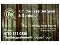 Tim the gardener - Hedges, Fencing, Trellis, Trees, New lawns, Clearances, Mowing
